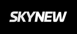 skynew-gaming-stuhl_logo